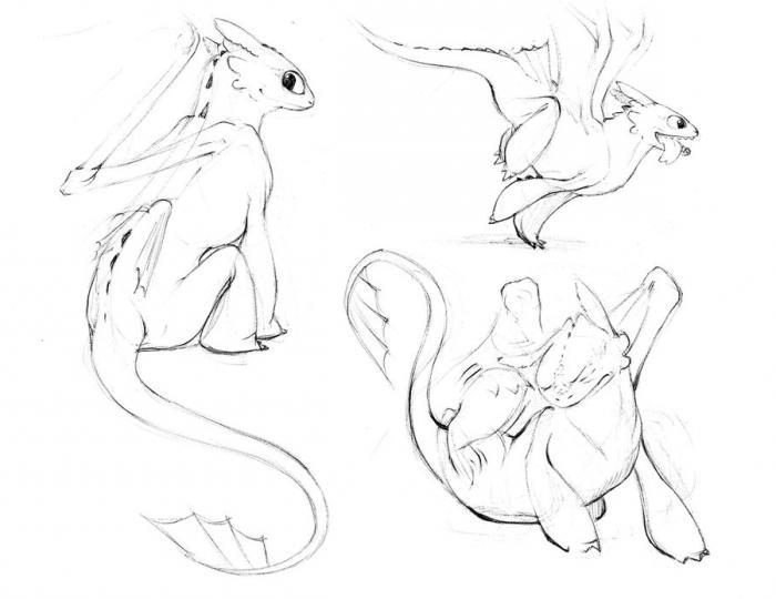 как нарисовать дракона беззубика поэтапно