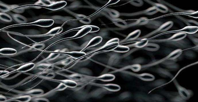 Сперма жидкая как вода