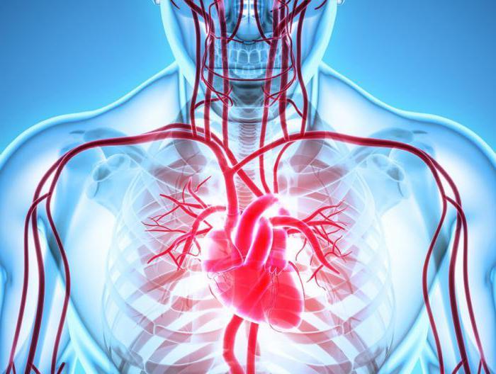 ишемическая болезнь сердца диагностика лечение