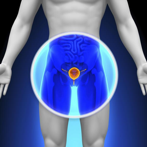 Цистоскопия мочевого пузыря у женщин и мужчин: описание процедуры