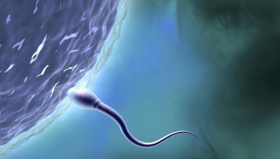 аллергия на сперму симптомы