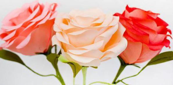 из крепированной бумаги цветы