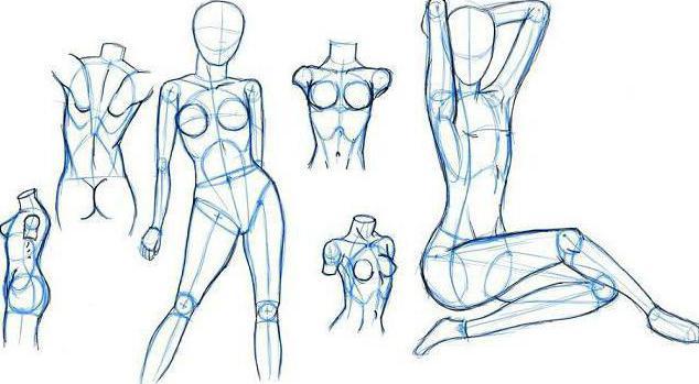 Рисовать карандашом женскую телу 2