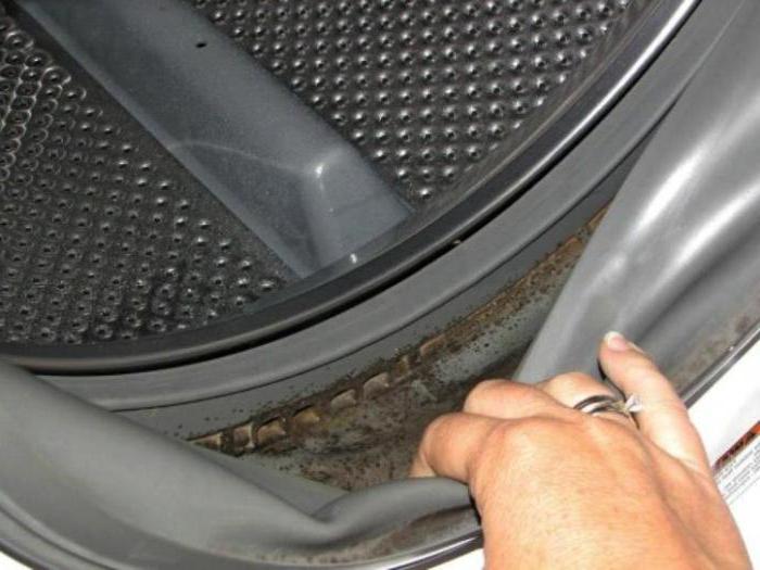 плесень в стиральной машине как избавиться