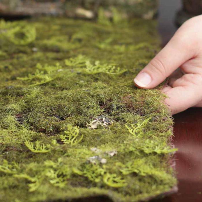 Как и из чего сделать искусственный мох