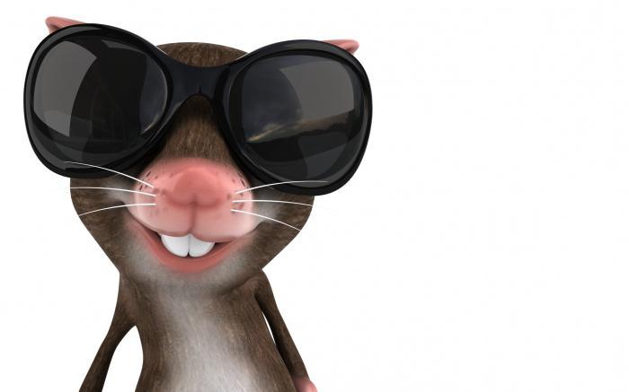 Чем мышь питается?