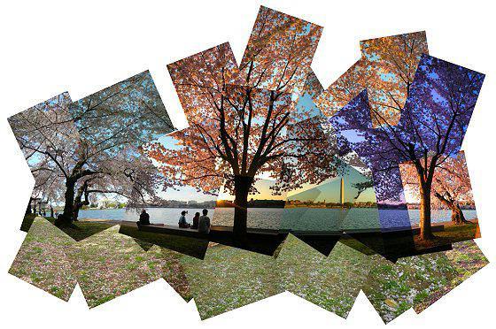 Что такое фотоколлажи и как создать оригинальный подарок своими руками