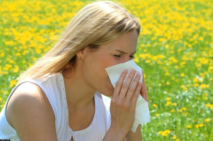 аллергия на амброзию как лечить форум гомеопатия