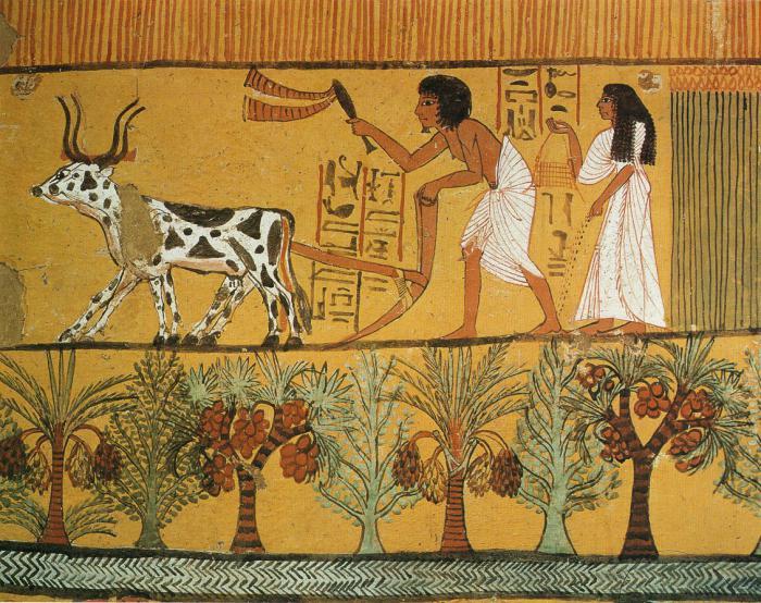 рельефы и росписи древнего египта