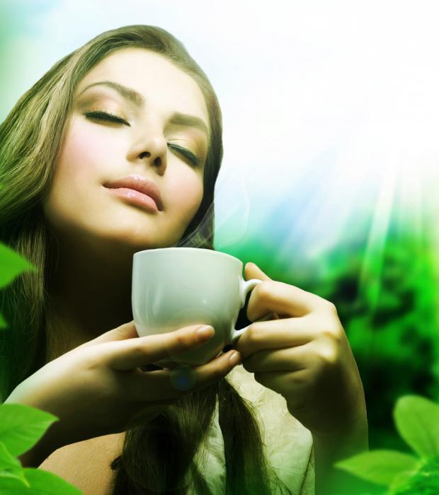 сбор чая для похудения