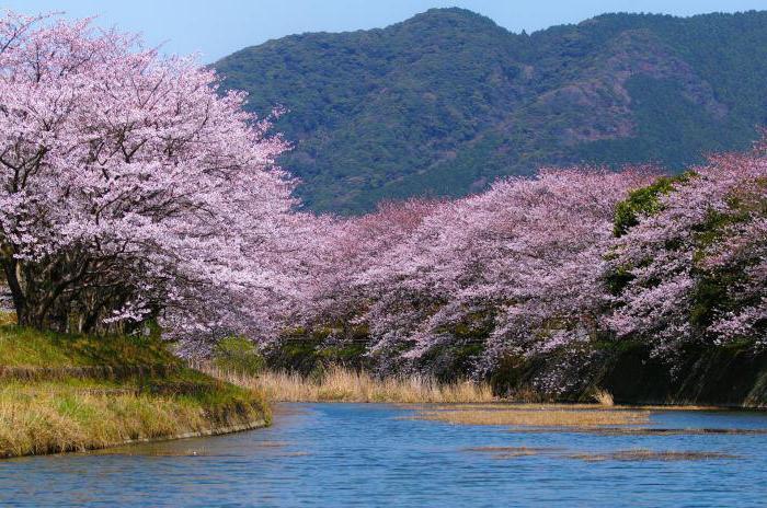 обеспеченность природными ресурсами японии