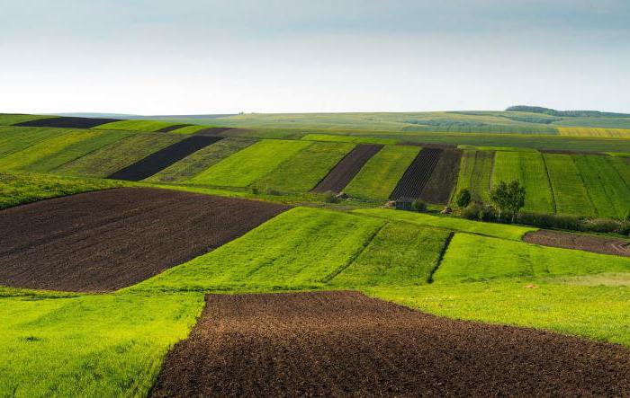 характеристика рельефа Украины