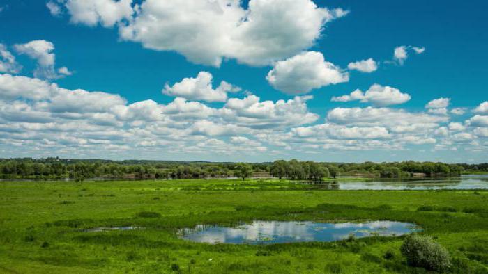 разнообразие природы Татарстана