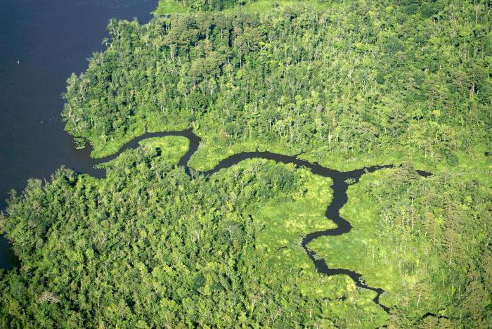 что такое приток реки определение