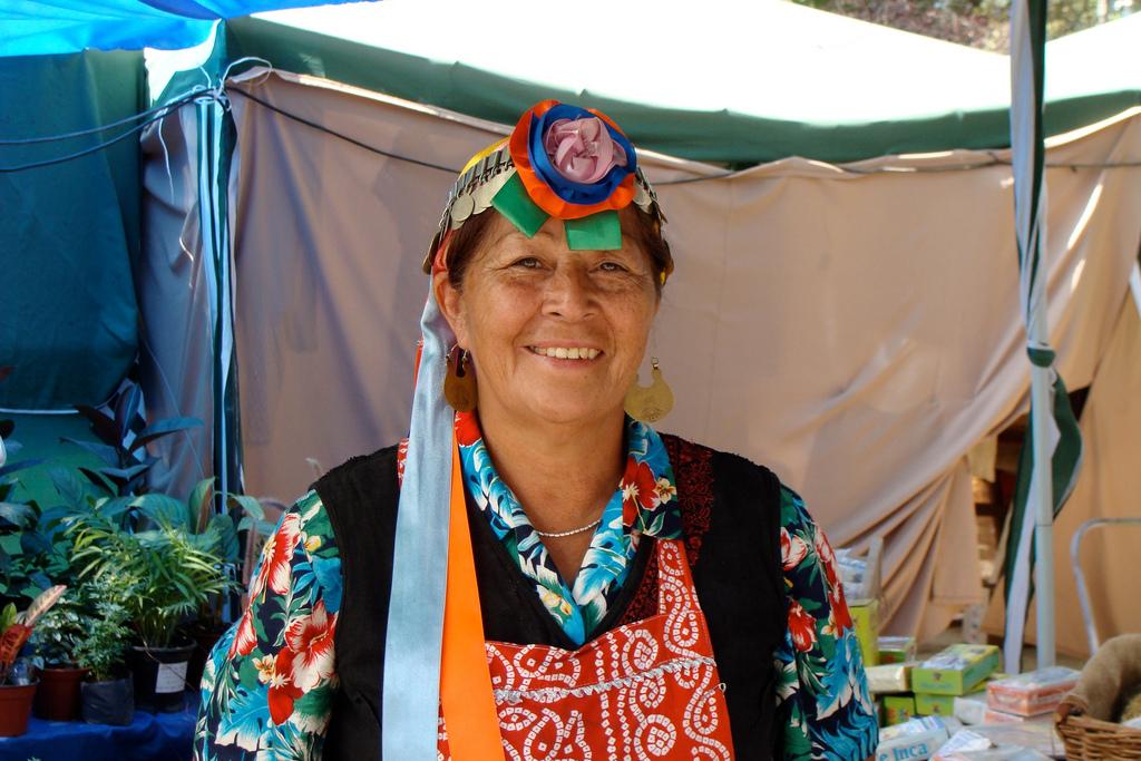 Индейцы в Чили