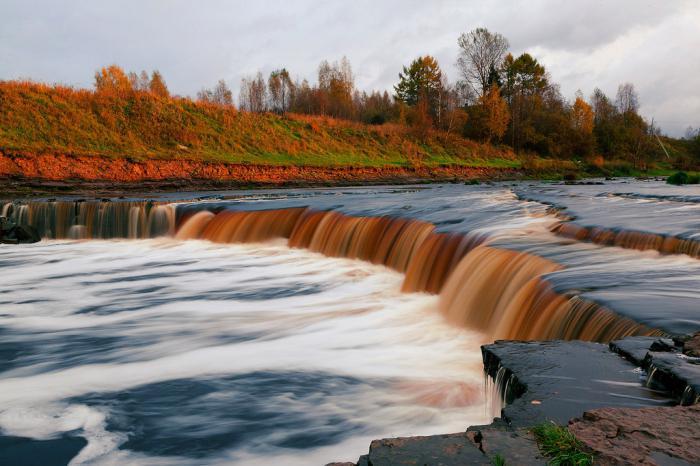 фото природа ленинградской области