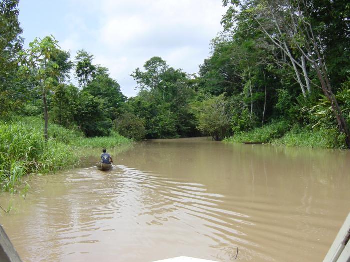 Амазонка хозяйственное использование реки