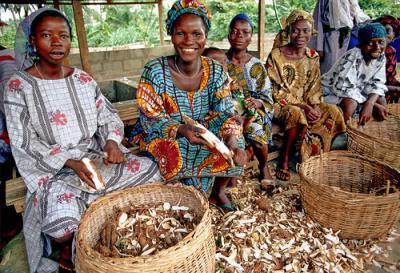 коренное население Нигерии