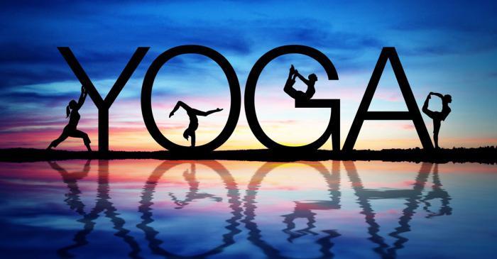 Виды йоги для начинающих