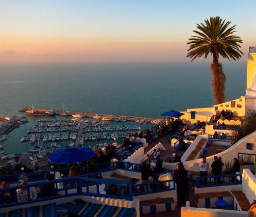 Тунис в какой стране находится