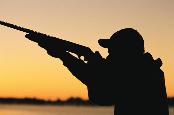 Документы на перерегистрацию охотничьего оружия