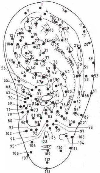 Акупунктура уши схема