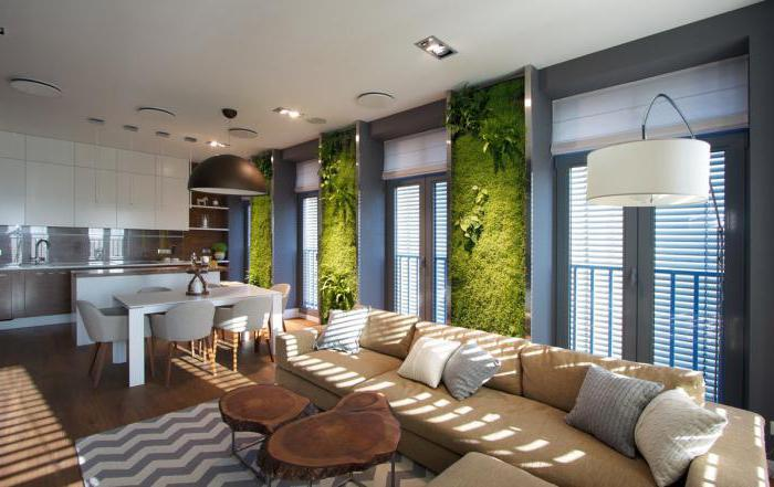 Зеленая стена из комнатных растений
