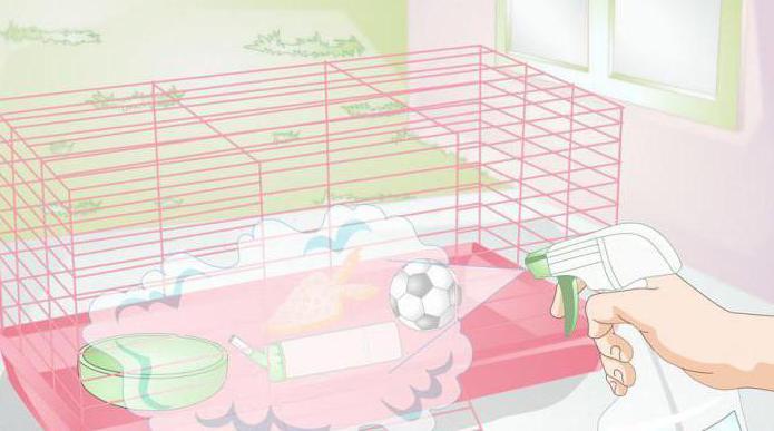 ушной клещ у кроликов лечение в домашних условиях лекарства