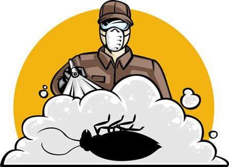 Уничтожение тараканов туманом: отзывы