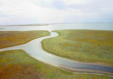 озеро маныч в ростовской области