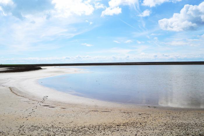 озеро маныч гудило в ростовской области