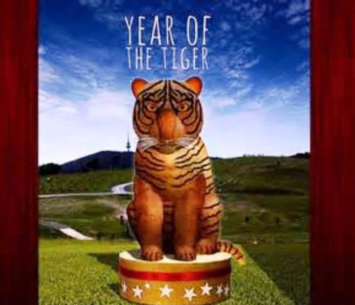 характеристика рожденных под знаком тигра