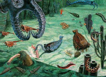 геологические эры и история жизни на земле