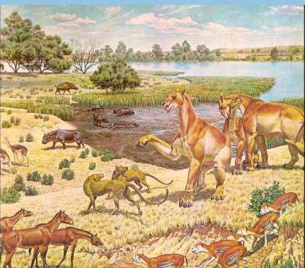 история земли геологическая шкала времени