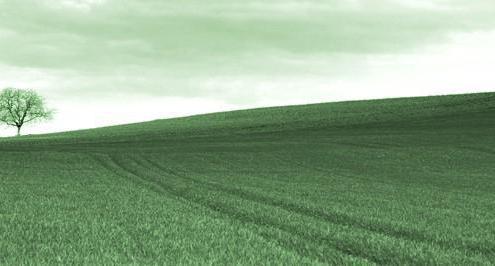 Право использования земельного участка