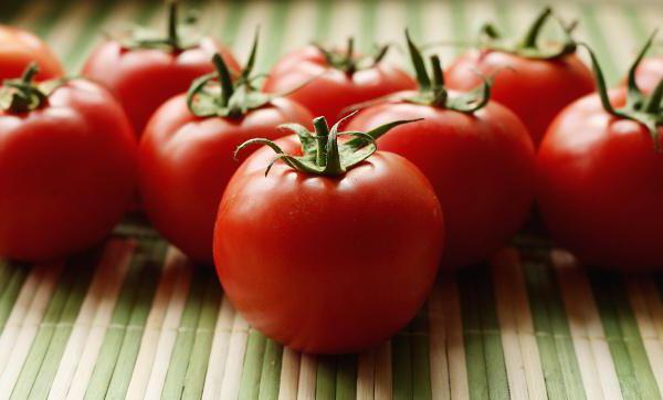 выращивание помидоров по методу и м маслова