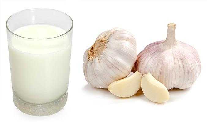 Чеснок и молоко - эффективное средство