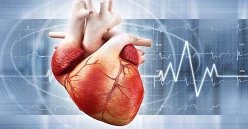 Радиочастотная абляция сердца.