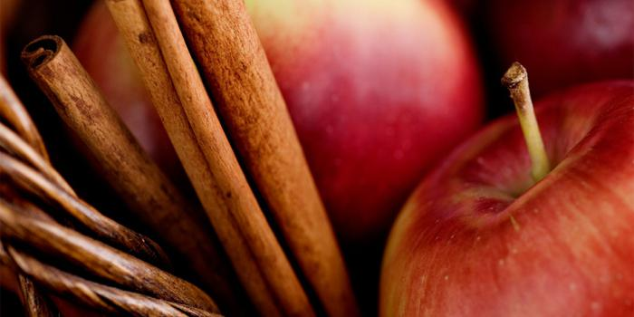 """theme of the scent of apples """"at the scent of wonder,"""" available in my the right words at the right time are like apples of gold in settings of themes wordpress blog."""