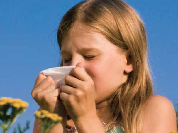 может ли быть аллергия на диспорт