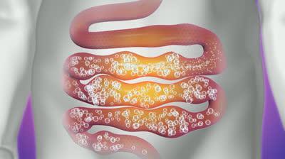 лекарственные средства от паразитов