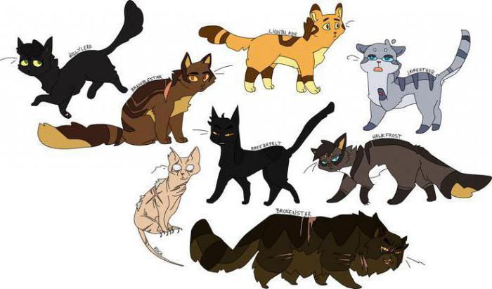 Дизайны котов воителей