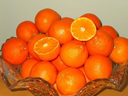 сорт мандаринов клементины