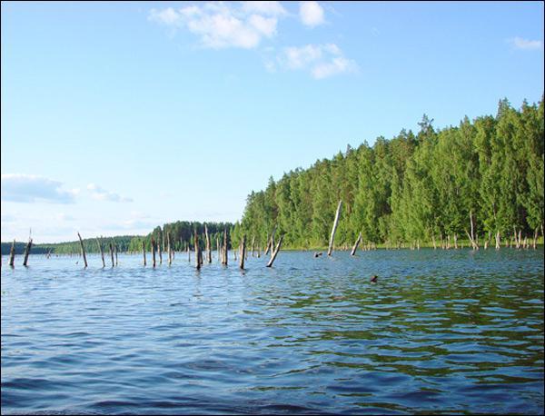 Озеро Псковское