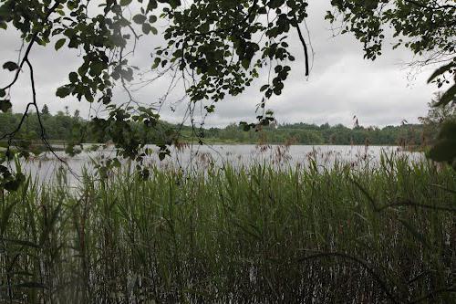 рыбалка на Псковском озере