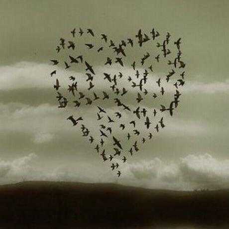 Приметы на любовь: верить или нет