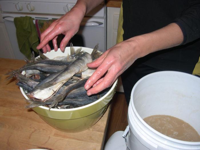 сколько солить рыбу для сушки