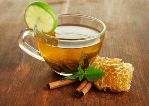 сбор липы для чая
