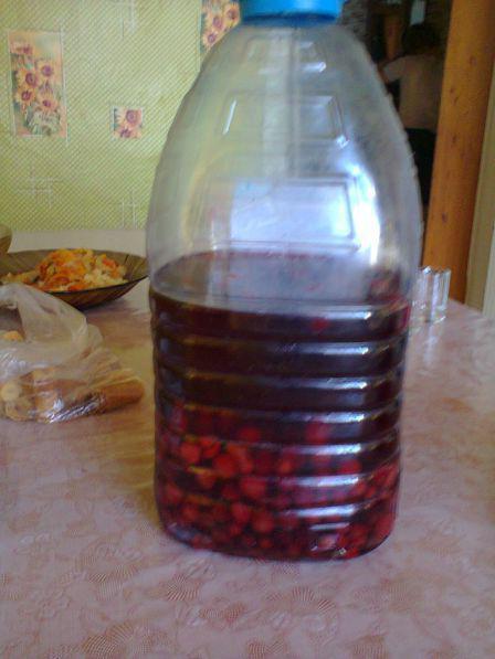 Вино в домашних условиях из терна рецепт 220