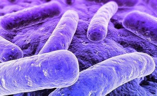 чем лечить микоплазму у мужчин